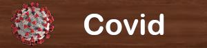Informa��es Covid